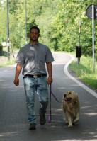 social-walking-1 (medio)